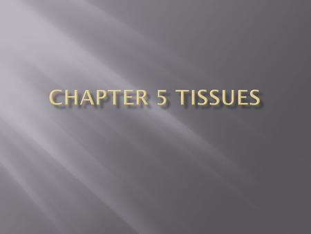 Chapter 5 Tissues.