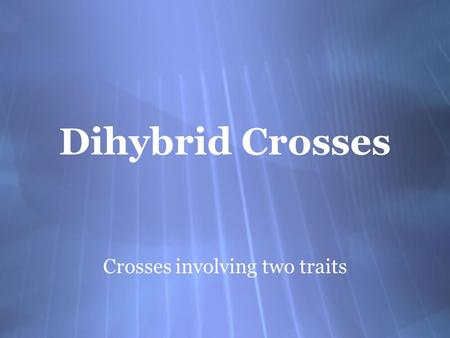 Dihybrid Crosses Crosses involving two traits. Dihybrid Crosses  Constructing a Punnett square for a dihybrid cross is similar to the method used for.