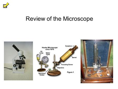 Review of the Microscope. Who Invented the Microscope? 2 - Some scientists have credited Zacharias Janssen of the Netherlands for inventing the optical.