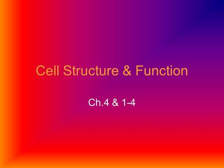 Cell Structure & Function Ch.4 & 1-4. (4-1) History Cell: smallest unit that can carry on the processes of life Hooke (1665): looked at plants under microscope.