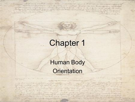 Chapter 1 Human Body Orientation. Anatomy Study of structure –Types Gross Anatomy: the study of large body structures visible to the naked eye such as.