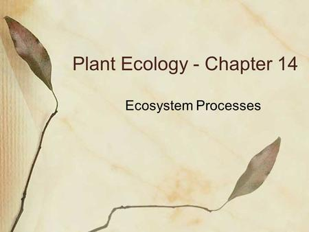 Plant Ecology - Chapter 14 Ecosystem Processes. Ecosystem Ecology Focus on what regulates pools (quantities stored) and fluxes (flows) of materials and.