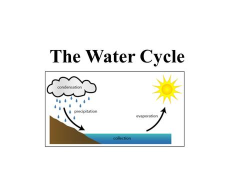 The Water Cycle Evaporation Condensation Precipitation
