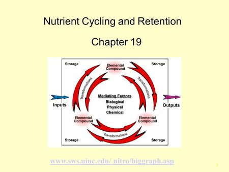 1 Nutrient Cycling and Retention Chapter 19 www.sws.uiuc.edu/ nitro/biggraph.asp.