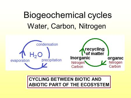 Biogeochemical cycles Water, Carbon, Nitrogen. THE WATER CYCLE (hydrologic) Water moves between the ocean atmosphere, and land. Water molecules enter.