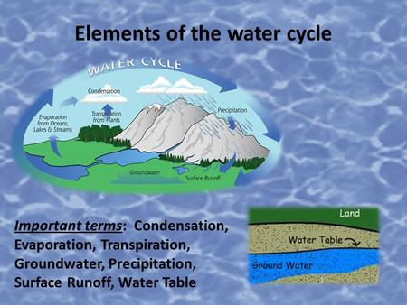 Elements of the water cycle Important terms: Condensation, Evaporation, Transpiration, Groundwater, Precipitation, Surface Runoff, Water Table.