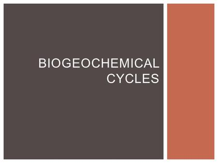 BIOGEOCHEMICAL CYCLES. Bio: life Geo: Earth Chemical Cycle: repeats WHAT IS A BIOGEOCHEMICAL CYCLE?