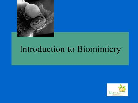 Introduction to Biomimicry. Where do ideas come from?