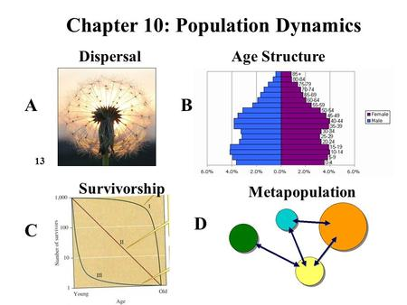 Chapter 10: Population Dynamics 13 AB C D Age Structure Metapopulation Dispersal Survivorship.