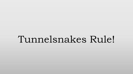 Tunnelsnakes Rule!. Story and Genre The game is about surviving waves of enemies for however long you can while gunning for a high score. You play the.