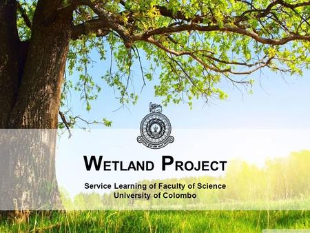 W ETLAND P ROJECT Service Learning of Faculty of Science University of Colombo 1.