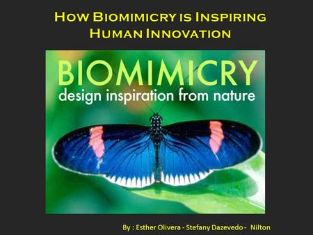 By : Esther Olivera - Stefany Dazevedo - Nilton. Biomimicry or biomimetics is the examination of Nature, its models, systems, processes, and elements.