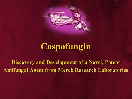 Antifungal Agent from Merck Research Laboratories Caspofungin Discovery and Development of a Novel, Potent.