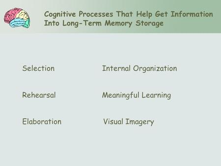 Cognitive Processes That Help Get Information