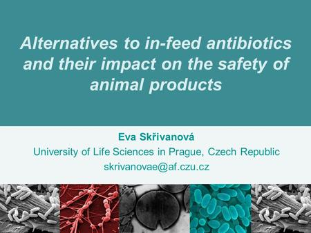 Alternatives to in-feed antibiotics and their impact on the safety of animal products Eva Skřivanová University of Life Sciences in Prague, Czech Republic.