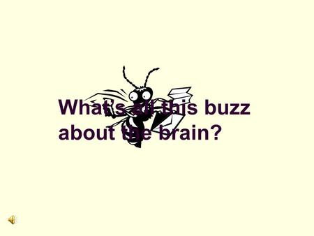 What's all this buzz about the brain? Creating a Brain - Compatible Classroom Neuroscience and the Adult Educator.