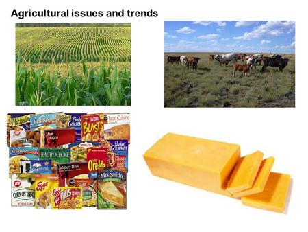 Agricultural issues and trends. Corn based ethanol in the United States.