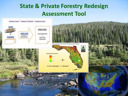 1 State & Private Forestry Redesign Assessment Tool.