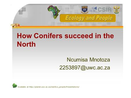 Available at  How Conifers succeed in the North Ncumisa Mnotoza