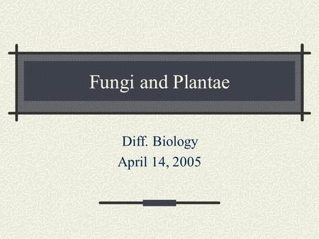 "Fungi and Plantae Diff. Biology April 14, 2005. A little fun for the day… Mushroom walks into a bar and asks for a drink. Bartender says, ""Sorry, we don't."