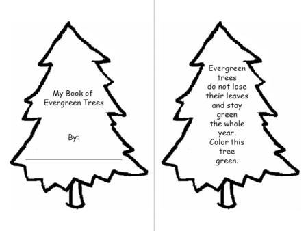 My Book of Evergreen Trees By: ____________________ Evergreen trees do not lose their leaves and stay green the whole year. Color this tree green.