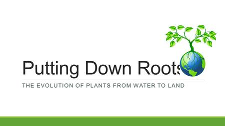 Putting Down Roots THE EVOLUTION OF PLANTS FROM WATER TO LAND.