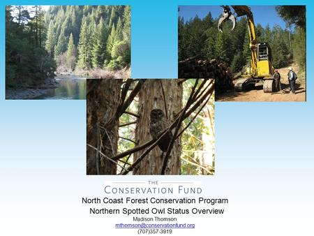 North Coast Forest Conservation Program Northern Spotted Owl Status Overview Madison Thomson (707)357-3919.