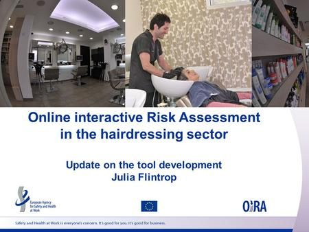 Online interactive Risk Assessment in the hairdressing sector Update on the tool development Julia Flintrop.