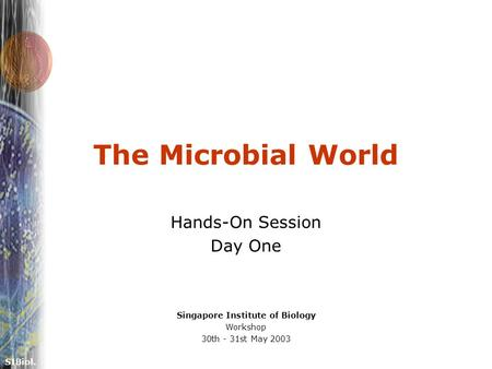 SIBiol. The Microbial World Hands-On Session Day One Singapore Institute of Biology Workshop 30th - 31st May 2003.