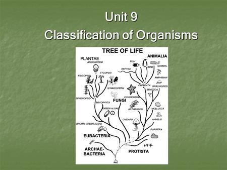 Unit 9 Classification of Organisms. I. Isn't everything living thing either a