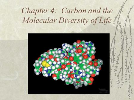 Chapter 4: Carbon and the Molecular Diversity of Life.