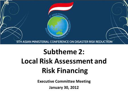 Subtheme 2: Local Risk Assessment and Risk Financing Executive Committee Meeting January 30, 2012.