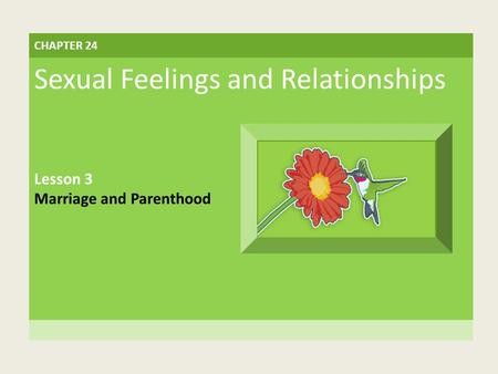 CHAPTER 24 Sexual Feelings and Relationships Lesson 3 Marriage and Parenthood.