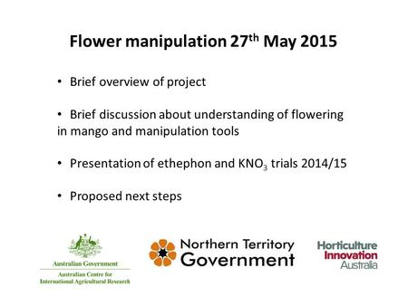 Flower manipulation 27 th May 2015 Brief overview of project Brief discussion about understanding of flowering in mango and manipulation tools Presentation.