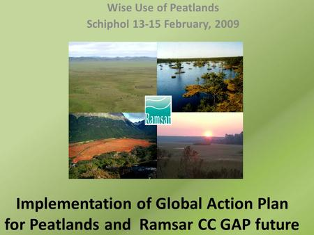 Implementation of Global Action Plan for Peatlands and Ramsar CC GAP future Wise Use of Peatlands Schiphol 13-15 February, 2009.