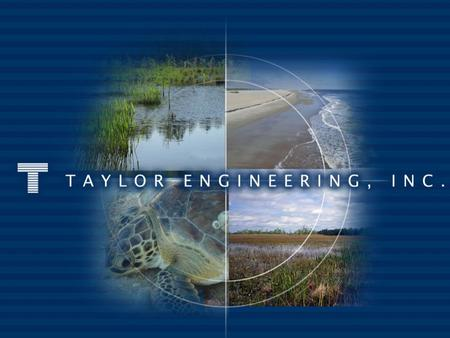 Coastal Processes Analysis for Vilano Beach, St. Johns County, FL Taylor Engineering, Inc. Hande Caliskan, M.Sc. Christopher Bender, Ph.D., P.E., D.CE.