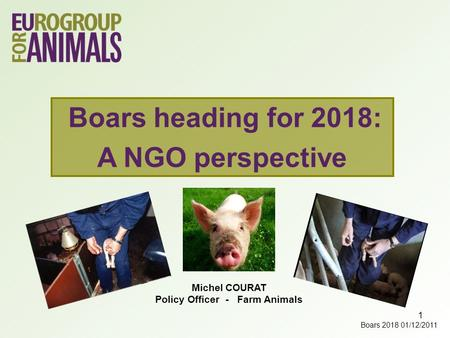 1 Michel COURAT Policy Officer - Farm Animals Boars heading for 2018: A NGO perspective Boars 2018 01/12/2011.