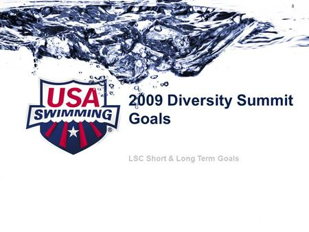 2009 Diversity Summit Goals Subtitle can go here if necessary LSC Short & Long Term Goals.