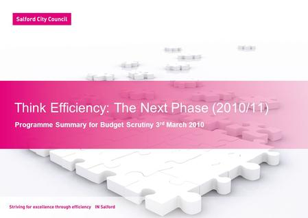 Think Efficiency: The Next Phase (2010/11) Programme Summary for Budget Scrutiny 3 rd March 2010.