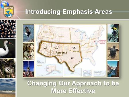 Introducing Emphasis Areas Changing Our Approach to be More Effective.