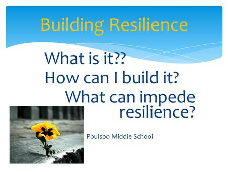 What is it?? How can I build it? What can impede resilience? Poulsbo Middle School Building Resilience.