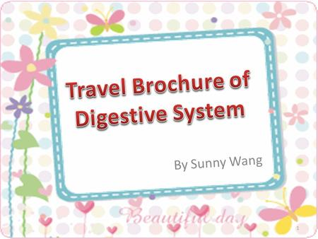 Travel Brochure of Digestive System