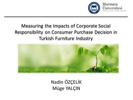 corporate social responsibility and branding essay