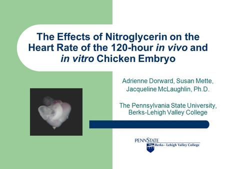 The Effects of Nitroglycerin on the Heart Rate of the 120-hour in vivo and in vitro Chicken Embryo Adrienne Dorward, Susan Mette, Jacqueline McLaughlin,