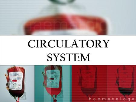 CIRCULATORY SYSTEM. FUNCTIONS Transports oxygen and nutrients to the cells Transports carbon dioxide and other waste for elimination from the body Maintains.