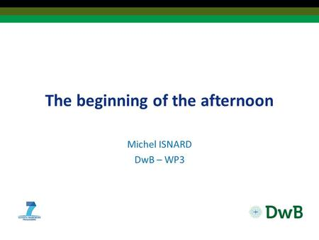 The beginning of the afternoon Michel ISNARD DwB – WP3.