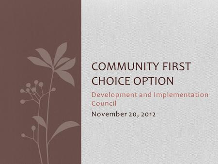 Development and Implementation Council November 20, 2012 COMMUNITY FIRST CHOICE OPTION.