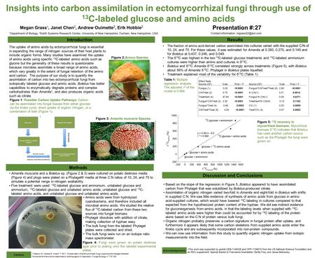 Insights into carbon assimilation in ectomycorrhizal fungi through use of 13 C-labeled glucose and amino acids Megan Grass 1, Janet Chen 2, Andrew Ouimette.