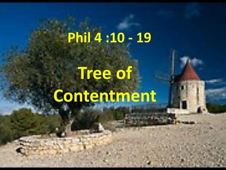 Phil 4 :10 - 19 Tree of Contentment.