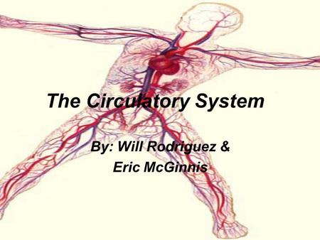The Circulatory System By: Will Rodriguez & Eric McGinnis.